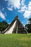 Tikal Mayan Ruïnes, de Reis van Guatemala stock afbeeldingen