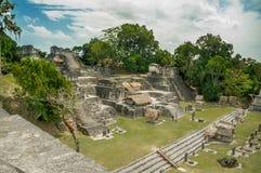 Tikal mayan ruins in guatemala royalty free stock photos