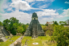 Free Tikal Mayan Ruins In Guatemala Royalty Free Stock Photos - 45030348