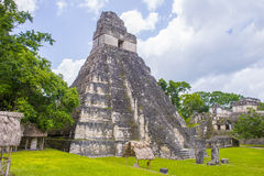 Tikal National Park Royalty Free Stock Photography