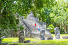Tikal National Park Stock Image