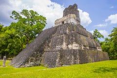 Tikal National Park Royalty Free Stock Photos