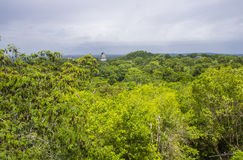 Tikal National Park Stock Photography