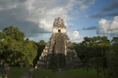 Tikal nationalpark Arkivfoto