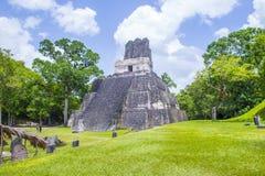 Tikal nationalpark Arkivbilder