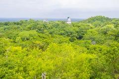 Tikal nationalpark Royaltyfria Foton