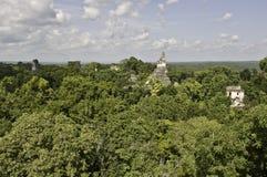 Tikal - panoramic view. Pinnacles of maya-pyramides of tikal, guatemala, looking out of the jungle Royalty Free Stock Photo