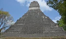 Tikal park narodowy Obrazy Royalty Free