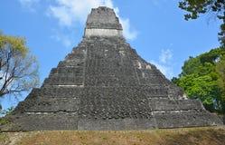 Tikal park narodowy Zdjęcia Royalty Free