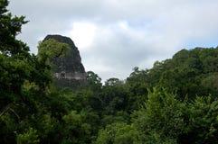 Tikal Piramid Royaltyfri Bild