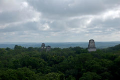 Tikal Piramids Royaltyfri Bild