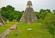 Tikal Pyramid in Guatemala Royalty Free Stock Photo