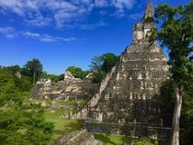 Tikal Pyramid - Guatemala stock images