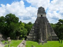 Tikal Pyramid  3 Royalty Free Stock Image