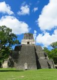 Tikal Pyramid  2 Royalty Free Stock Photography