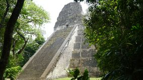 Tikal Pyramids Gran Jaguar in Peten, Guatemala royalty free stock photo