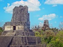 Tikal Pyramids, Guatemala royalty free stock photos