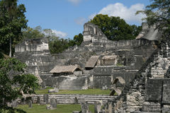 Tikal Ruins Royalty Free Stock Photography