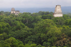Tikal Ruins. A view over the ruined Mayan city of Tikal in modern day Guatemala Royalty Free Stock Photo