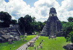 tikal tempel Royaltyfri Foto