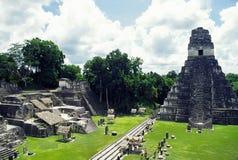 tikal tempel Arkivbild