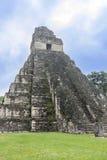 Tikal tempel I, tempel av den stora Jaguar i den huvudsakliga plazaen av Royaltyfri Foto