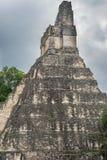 Tikal tempel I, tempel av den stora Jaguar i den huvudsakliga plazaen av Royaltyfri Bild