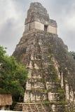 Tikal tempel I, tempel av den stora Jaguar i den huvudsakliga plazaen av Royaltyfri Fotografi