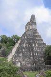 Tikal tempel I, tempel av den stora Jaguar i den huvudsakliga plazaen av Royaltyfria Bilder