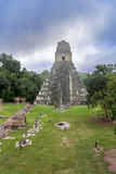 Tikal Temple I, Temple of the Great Jaguar in the main Plaza of Stock Photo