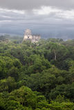 Tikal Temple Royalty Free Stock Photo