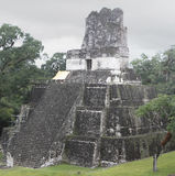 Tikal Temple Royalty Free Stock Images