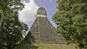 Tikal - templo Foto de Stock Royalty Free
