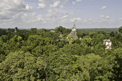 Tikal - vista panoramica fotografia stock libera da diritti