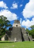 Tikalpiramide 2 Royalty-vrije Stock Fotografie