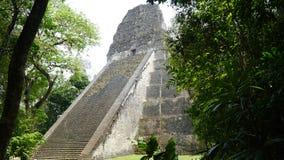 Tikalpiramides Gran Jaguar in Peten, Guatemala royalty-vrije stock foto