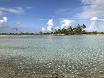 Tikehau lagun royaltyfri fotografi