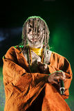Tiken Jah Fakoli live Royalty Free Stock Photography