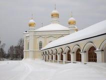 tikhvin för kvinnligklosternovo Royaltyfria Bilder