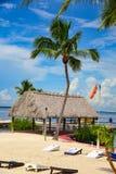 Tiki小屋和棕榈树在海滩 免版税库存图片