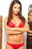 tiki девушки бикини сексуальное Стоковая Фотография RF