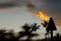 Факел Tiki Стоковая Фотография RF