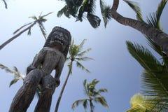 Tiki hawaiano Fotografia Stock