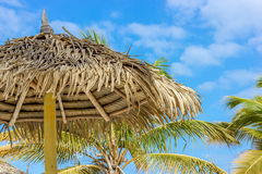 Tiki Hut Umbrella with Dried Palm Leaves Royalty Free Stock Photo