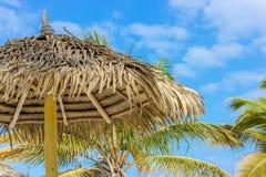 Tiki Hut Umbrella mit getrockneten Palmblättern Lizenzfreies Stockfoto