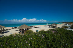 Tiki huts  on Bimini beach Stock Photo