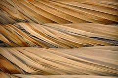 Tiki Roof Structure-close-up Royalty-vrije Stock Afbeeldingen