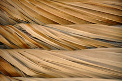 Tiki Roof Structure close-up Royalty Free Stock Images