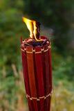 Tiki Torch Burning Royalty Free Stock Images