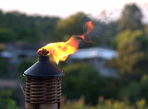 Tiki torch flame Royalty Free Stock Photo